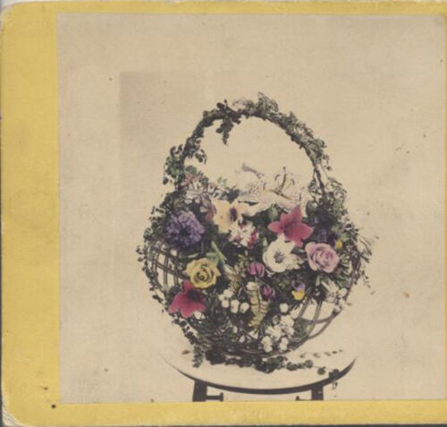 STEREOVIEW OF COLORED BASKET OF FLOWERS BY KILBURN BROTHERS - LITTLETON, NH