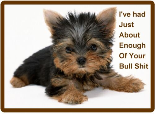 Funny Mad Dog Yorkie Yorkshire Refrigerator / Tool Box Magnet / Gift Card Insert