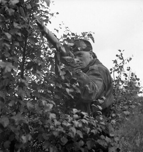 WW2 Photo WWII  World War Two Canadian Sniper Belgium 1944 Enfield   / 1508Canada - 156429