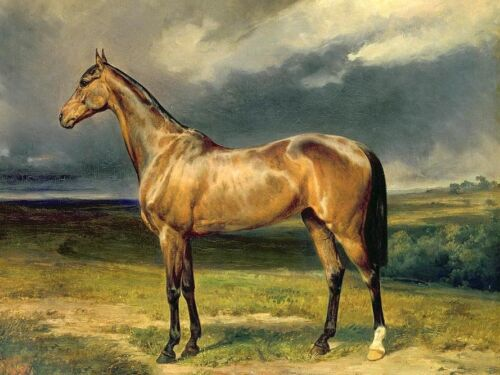 Hand painted art Oil painting strong gray horse standing in landscape in cloudy
