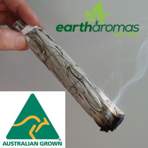 2nd Quality - White Sage Smudge Stick - Australian Grown - Organic - Clearing