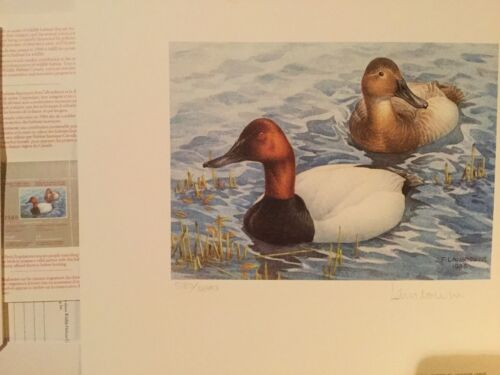 1985 and 1986 first of canada stamp duck print