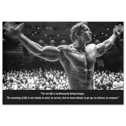 Arnold Schwarzenegger Motivational Poster - High Quality Prints
