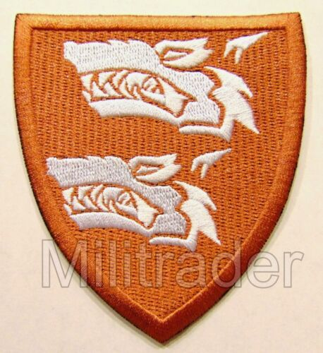 SALE!! Subdued Norway Norwegian Jump Wing Free Fall Star Patch