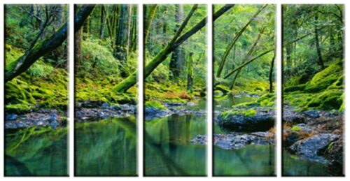 5 Piece Nature Green Tree Water Lake Canvas Wall Art Picture Print Home Decor