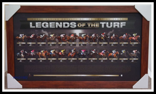 Legends of the Turf Limited Edition Print Framed Sunline Northerly Black Caviar