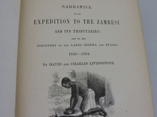 Narrative of Expedition to Zambesi Book Livingstone 1866 Africa Antique Map