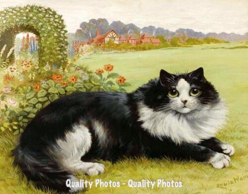 """Cat Resting in the Garden 8.5x11"""" Photo Print Louis Wain Whimsical Painting Art"""