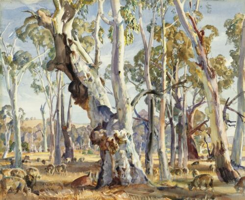 "Hans Heysen  Canvas Print  ""White River Gums SA""  Framed & Ready to Hang"