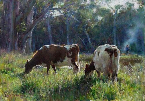 Canvas Prints. Cows Grazing in the Paddock  Framed Ready to Hang