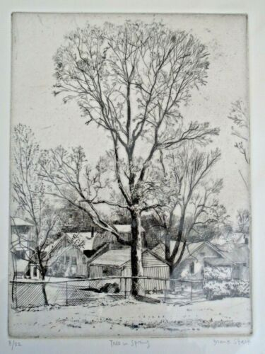 Frank Stack Signed Tree in Spring Etching (Robert Crumb contemporary)