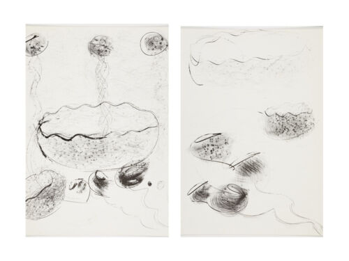 Set of 2 original Dale Chihuly lithographs Untitled Black & White #1 and #2