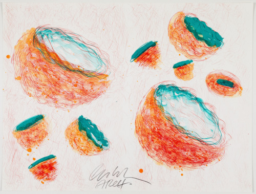 Original signed RARE Dale Chihuly Swinging Seaforms HUGE with documentation
