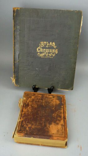 1869 Plat Map Book Atlas Chemung County NY & 1902 Biographical Record