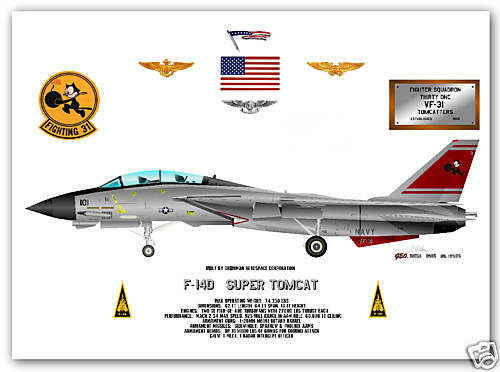 F-14D, Super Tomcat, VF-31, US Navy Fighter Print