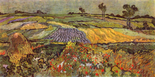 Oil painting Vincent Van Gogh - Spring field landscape with flowers canvas