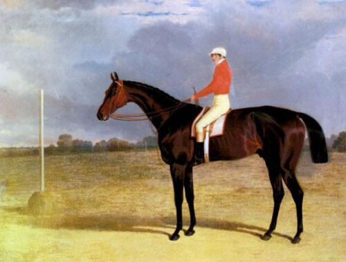 Oil Herring, John Frederick Jr - A Dark Bay Racehorse with Patrick Connolly Up