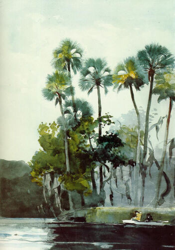 Homosassa River  by Winslow Homer  Giclee Canvas Print Repro