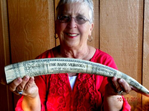 """Scrimshaw REPRODUCTION Walrus Tusk  the""""BARK VERONICA"""" 18 inches long"""