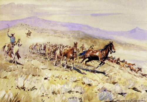 Bell Mare  by Edward Borein  Giclee Canvas Print Repro