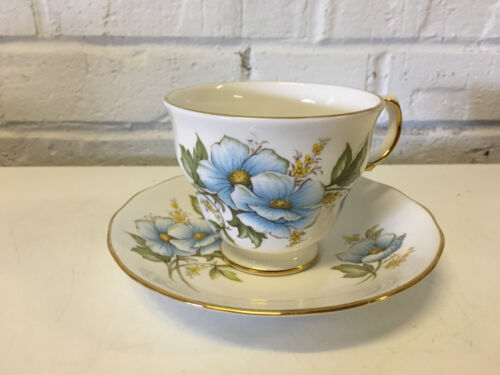 Vtg Shore & Coggins Queen Anne England Porcelain Cup & Saucer Floral Decoration