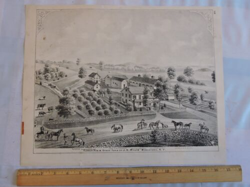 ORIG 1875 ORANGE COUNTY Middletown Willis Residence NEW YORK NY LITHOGRAPH 13x16