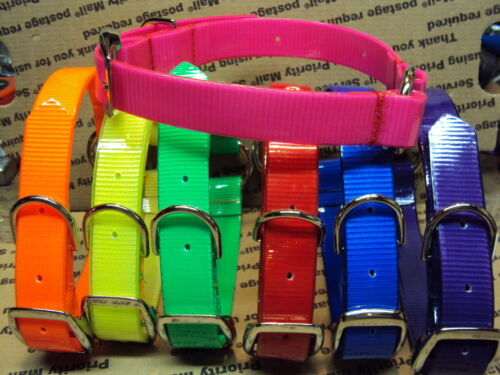 "21""  DAY-GLO NYLON DOG COLLARS FREE NAME PLATE TRACKING HOG SAFETY"