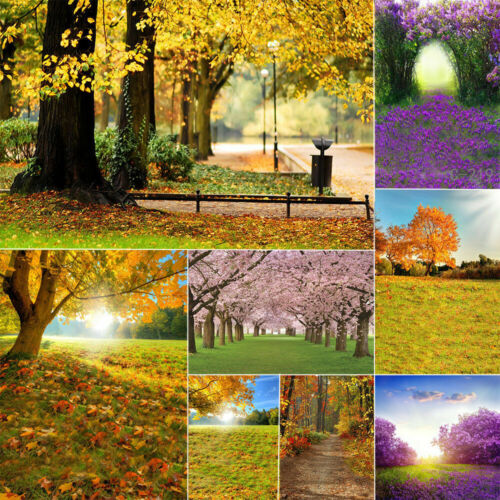 Nature Fall Forest Autumn Scenery Photography Background Studio Props Backdrop