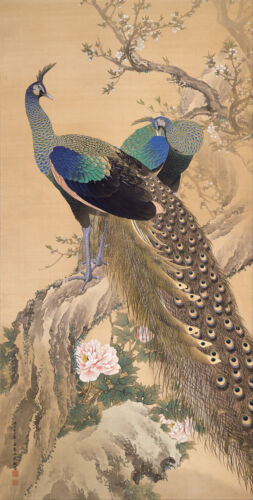 A Pair of Peacocks  by Imao Keinen   Giclee Canvas Print Repro