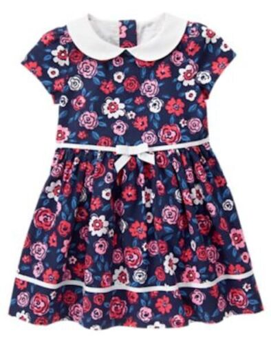 NWT Gymboree Best in Show Floral Dress 2T 3T 4T 5T Toddler Girls
