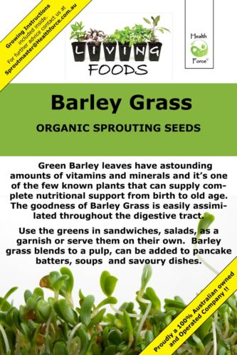 Barley Grass Organic Sprouting Seeds
