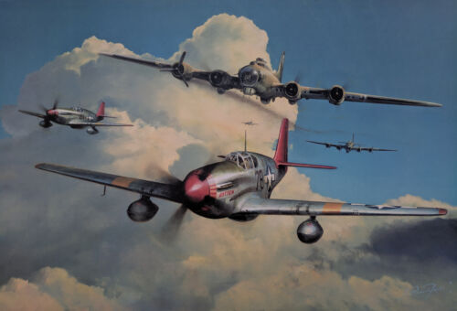 Red Tail Escort by Richard Taylor signed by Brigadier General Charles McGee