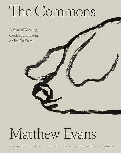 NEW The Commons By Matthew Evans Hardcover Free Shipping