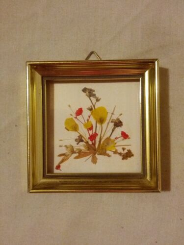 Vintage framed picture of some pressed flowers Handmade Switzerland Reichun