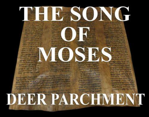 """TORAH BIBLE SCROLL VELLUM MANUSCRIPT LEAF 350 YRS ITALY """"The Song Of Moses"""""""