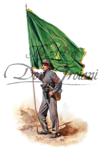 """10th Tennessee Color Bearer - Irish Legion C.S.A."" - Don Troiani"