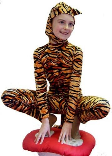 The CHESHIRE cat Fancy dress costume all ages & sizes