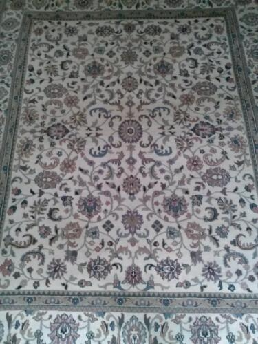 Beautiful Cream Color Hand Knotted Area Rug with Rich wool pile 8'x10'