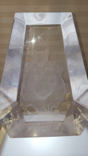 """Schimmel """"Africa's Future"""" Limited Edition Acrylic Sculpture S/N, w/cert of auth"""