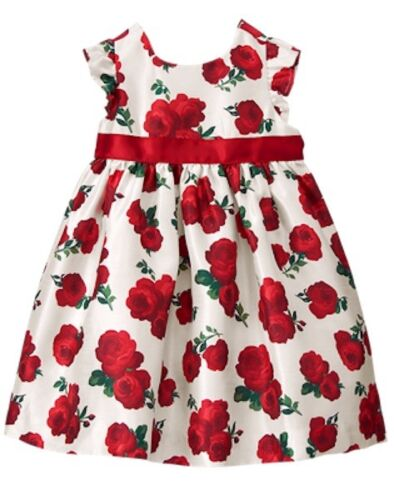 NWT Gymboree Fun and Fancy Rose Dress Toddler Baby Holiday Christmas
