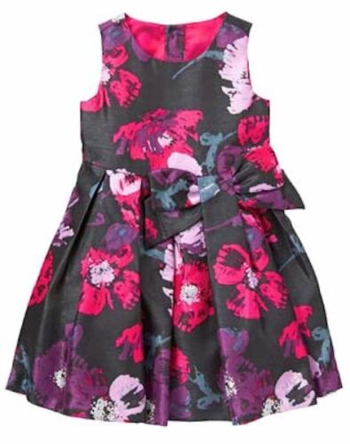 NWT Gymboree Prima Ballerina Floral Dress 3T,4T Toddler Girls