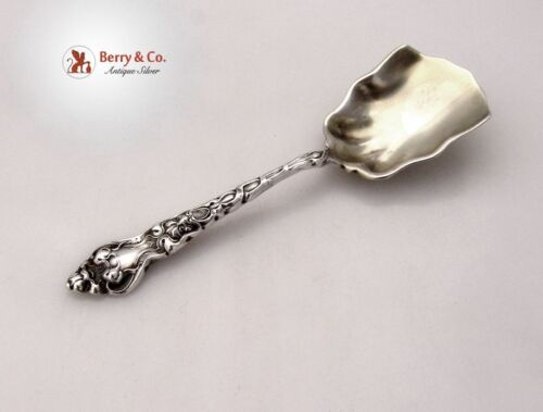 Douvaine Tea Caddy Spoon Unger Brothers Sterling Silver 1904 No Monograms