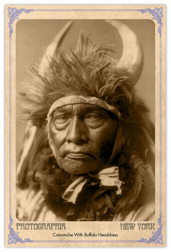 Bull Chief 1908 Edward S. Curtis Vintage Photograph A++ Reprint Cabinet Card