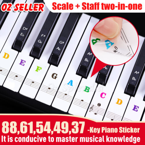 5 in 1 Universal Piano learner Sticker 54/61/88 Key Note Music Keyboard Stickers