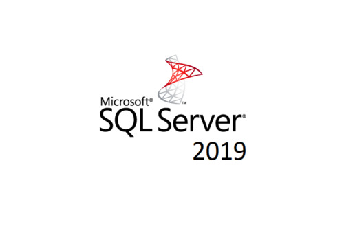 Microsoft SQL SERVER 2017 STANDARD EDITION ENGLISH 1 LICENSE 10 CLIENT