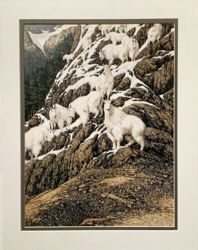 Bev Doolittle HIGH LIFE Double Matted print fits standard 11x14 ready made frame
