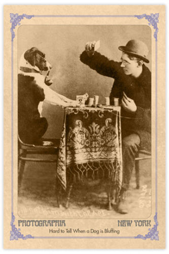 VICTORIAN DOG With Pipe&Poker Face Vintage Photograph Reprint Cabinet Card RP