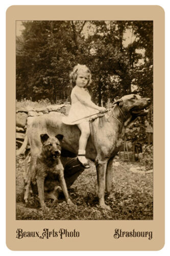 YOUNG GIRL RIDING A DOG Vintage Photograph Reprint Cabinet Card CDV