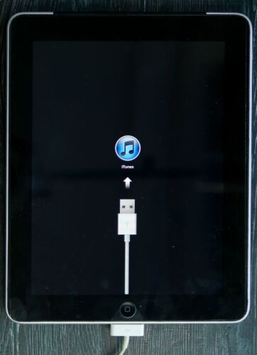 Apple iPad 1st Gen A1219 16GB WIFI 3G LCD replacement