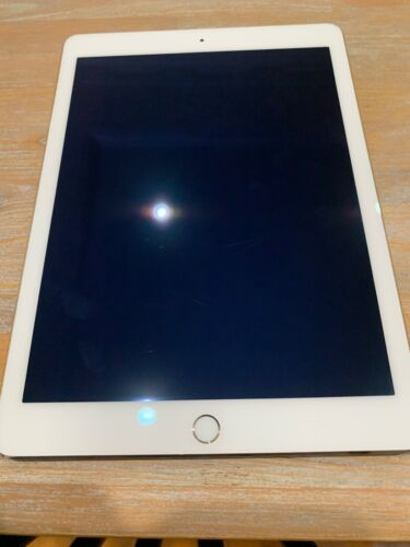Apple iPad Air 2 32GB, Wi-Fi, 9.7in - Gold (with STM case)